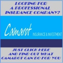 Looking for a professional insurance company?